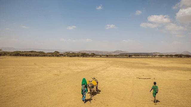 People on the move in an Africa desert