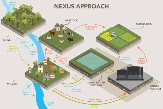 Constructed Wetlands to Turn Wastewater into Energy - UNU - Institute for  Integrated Management of Material Fluxes and of ResourcesUNU Flores - United Nations University