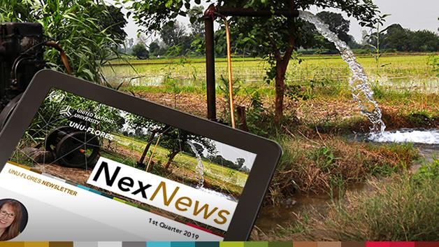 NexNews#11_slider