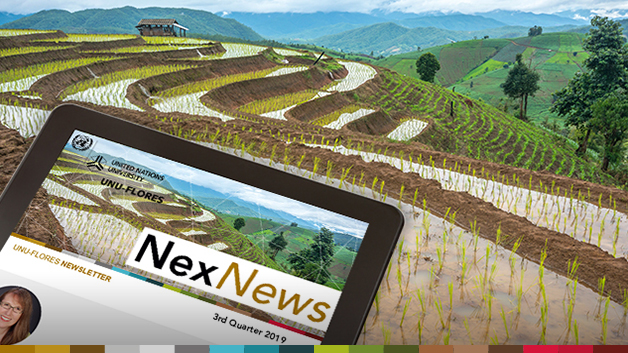 NexNews#13_slider