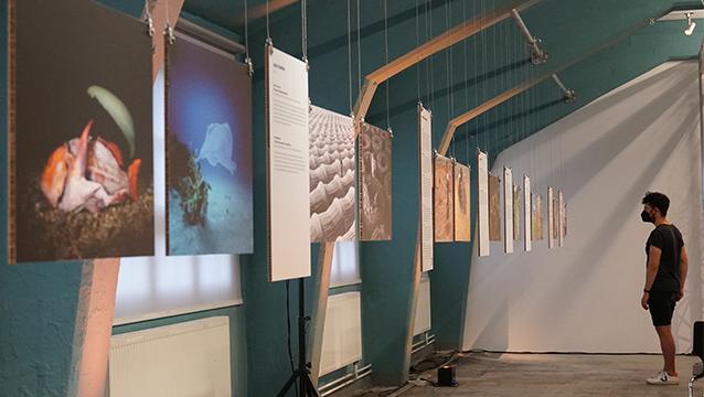 Exhibition_feature