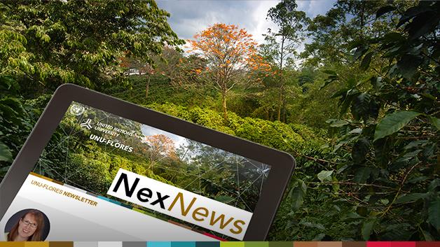 NexNews#19_slider