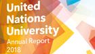 UNU_AnnualReport2018_preview