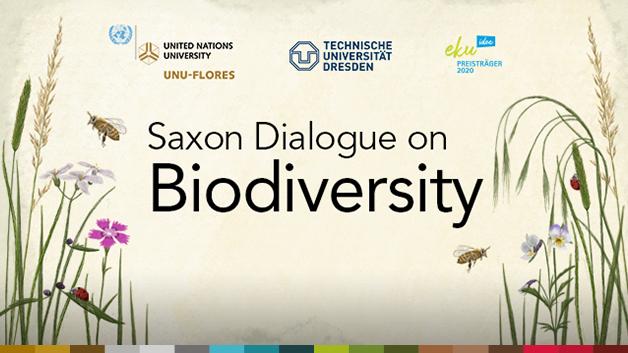 VI-Saxon-Biodiversity_v6_Website-638-360_slider
