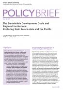 UNU-IAS Policy Brief No. 11, 2017