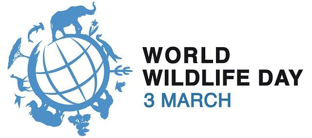 WWD-logo