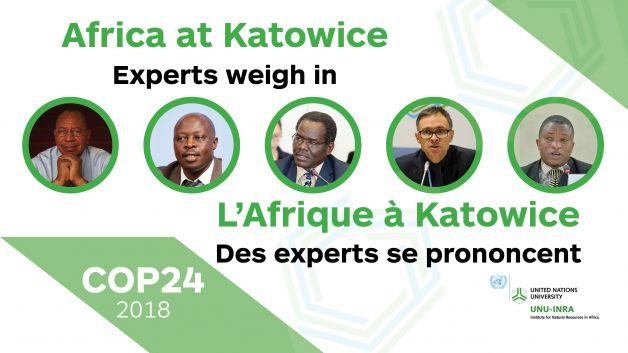 CoP24 – Web Banner (EN & FR) (1) 18 Feb 19