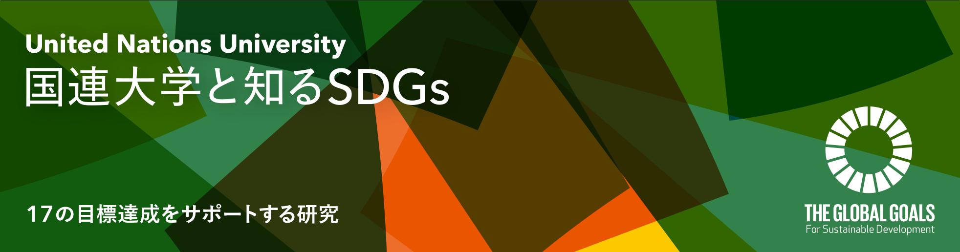 SDGs explorer banner