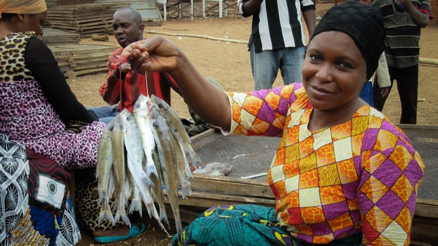 Left Out to Dry? Gender and Fisheries on Lake Tanganyika