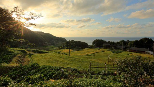 日本は里山と里海からヒントを得るべき