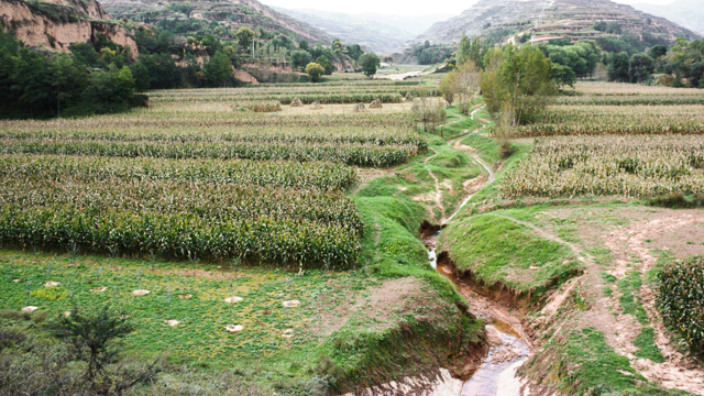 Arable damland in Loess Plateau