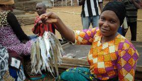 タンガニーカ湖地域におけるジェンダーと漁業