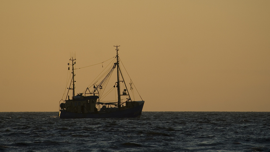 Biologists - End High Seas Fishing for Climates Sake