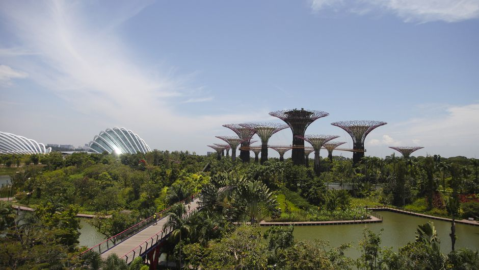 Garden by the Bay from afar
