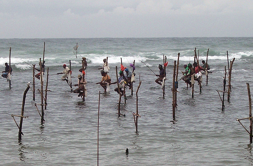 Stilt fishing in Sri Lanka.