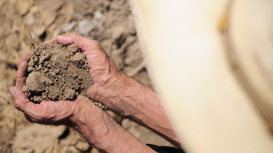 No Such Thing as a Free Lunch Investing in Healthy Soils