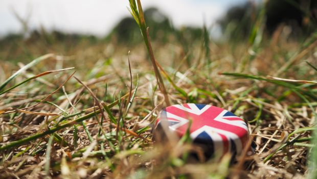 Union Jack bottlecap in grass