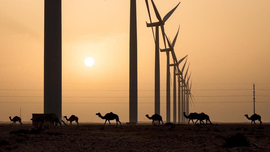 Tarfaya – Africa´s largest wind power plant