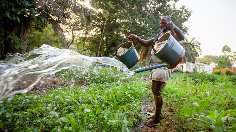 Wastewater irrigation in Ghana, Nana Kofi Acquah / IWMI