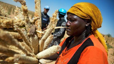 A woman is escorted by UN peacekeepers as she harvests millet near El Fasher, Sudan. Photo: UN Photo/Albert Gonzalez Farran