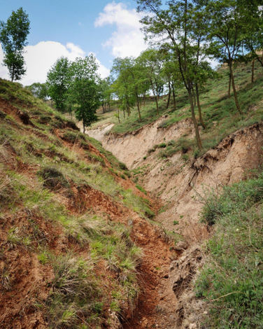 Severe soil erosion on a steep slope in Zhifanggou catchment, Pingliang, Gansu Province, China.