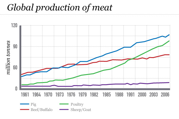 Food Production And Consumption