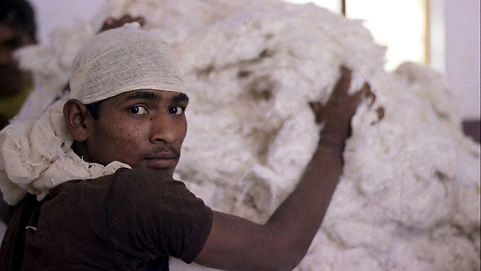 man-packing-wool