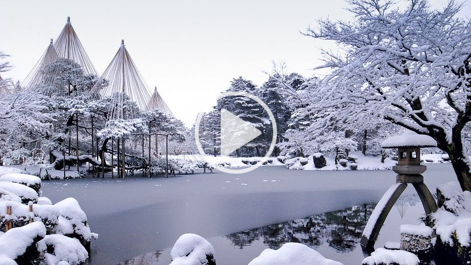 Biodiversity In Kanazawa Winter S Lesson Our World