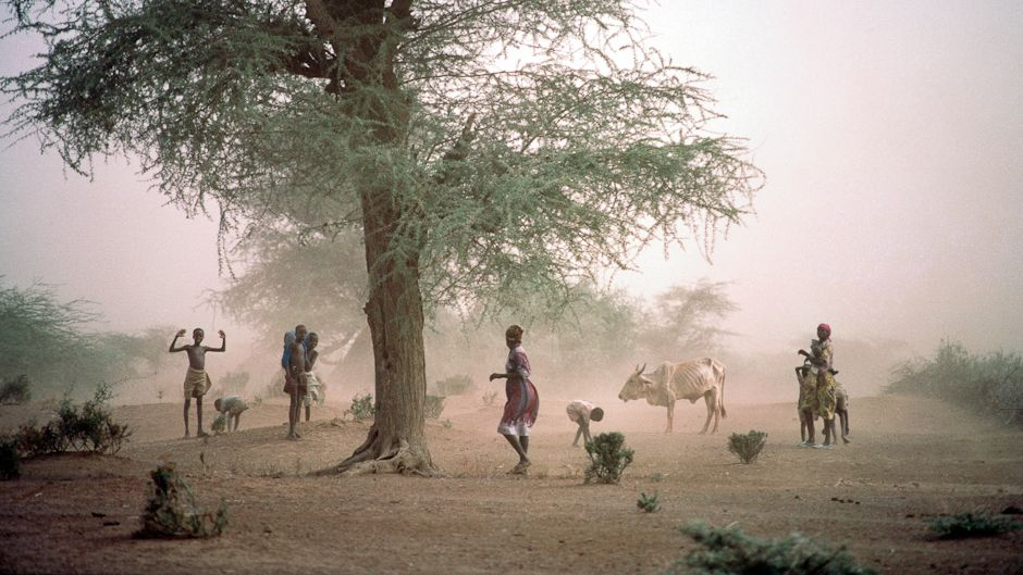 Kenya: first African nation to set up climate authority
