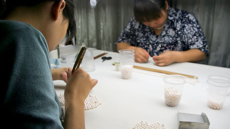 China's pearl industry: An indicator of ecological stress