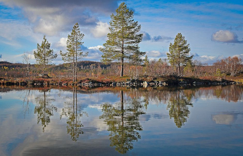 To the unfamiliar eye, the lakes and forests of northern Finland look as pristine and unchanged as they have been for the last 9,000 years, after the glaciers retreated northward in this part of Europe. Photo: © Gleb Raygorodetsky 2012.