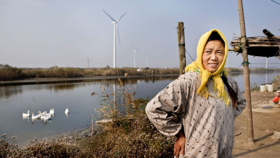 Co-benefits make wind power sensible for China