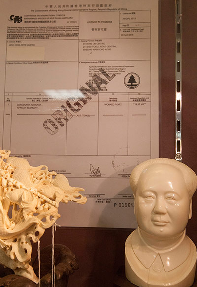 Hong Kong ivory traders offer steep discounts to consumers.