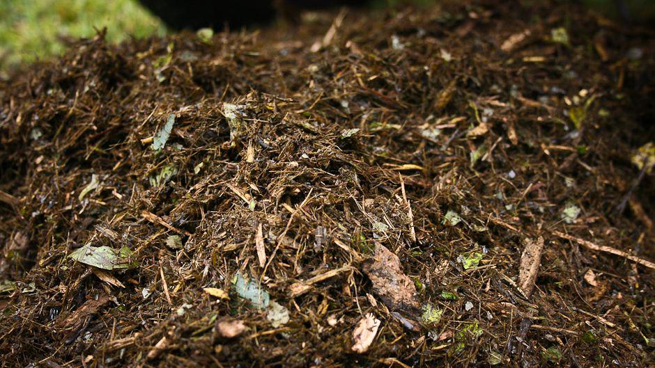 秘密は土壌の中