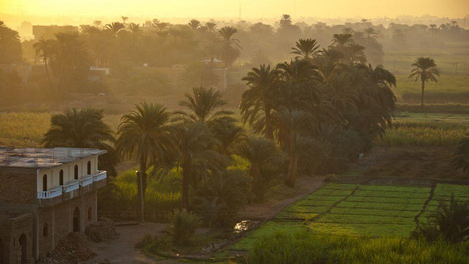 エジプトのバイオダイナミック農業