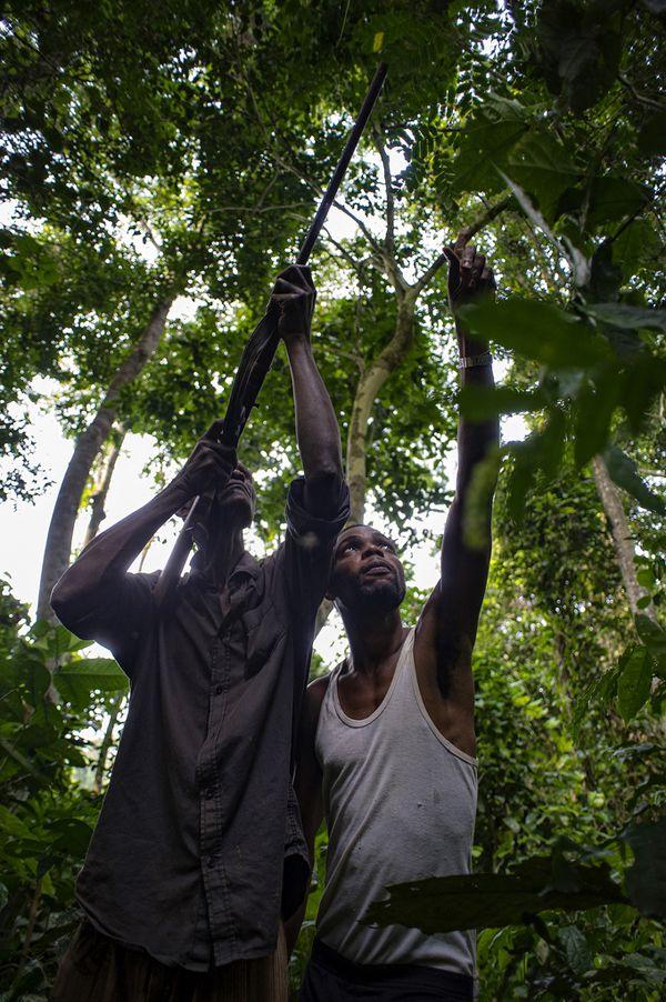 コンゴ民主共和国トゥンバ‐レディーマ保護区のハンター、ゾロ・ンデリ氏とタマンガ・エクワヨーリ氏。撮影:オリビエ・ジラール(CIFOR)