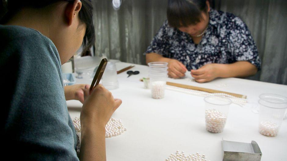 中国の真珠産業:生態学的負荷の指標
