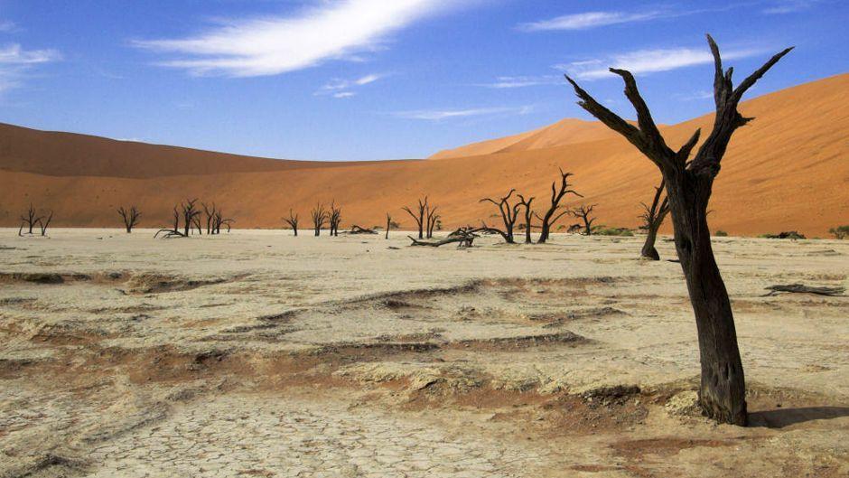 アフリカ:気候変動の犠牲者