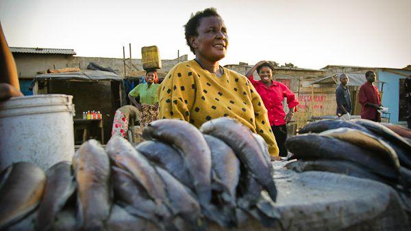 写真:スティーヴィー・マン/世界魚類センター