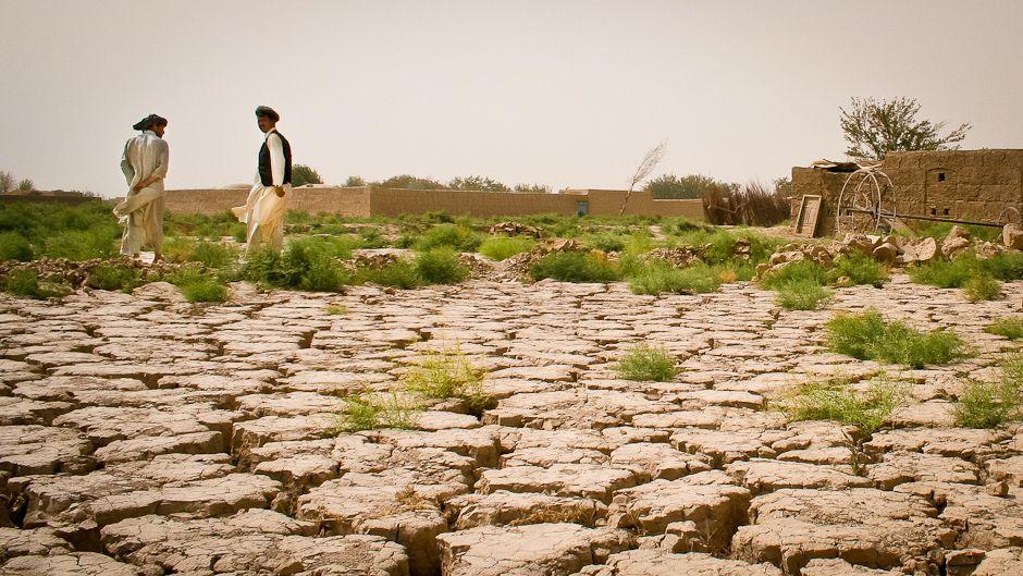 168カ国におよぶ砂漠化の危機