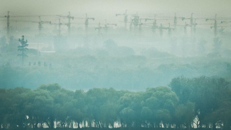 環境は国際関係を生き残れるか?