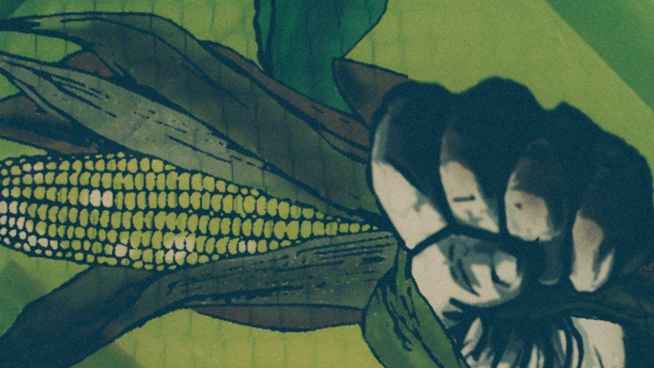 食料主権擁護者の犯罪化:傾向の移り変わり