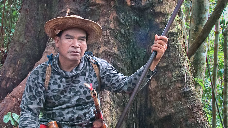Forbidden forest of the Dayak people