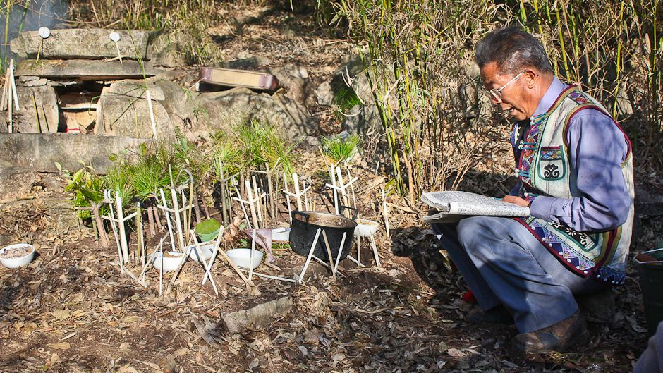 Sacred groves sustain bio-cultural richness in Yunnan forest