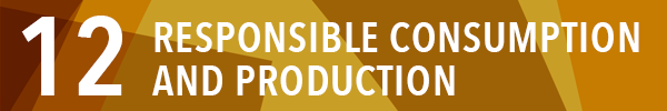 Sustainable development goal 12:responsible consumption and production
