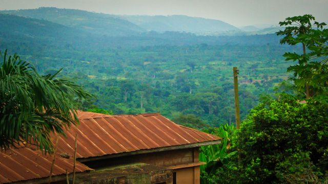 Forest income and household welfare in rural Nigeria