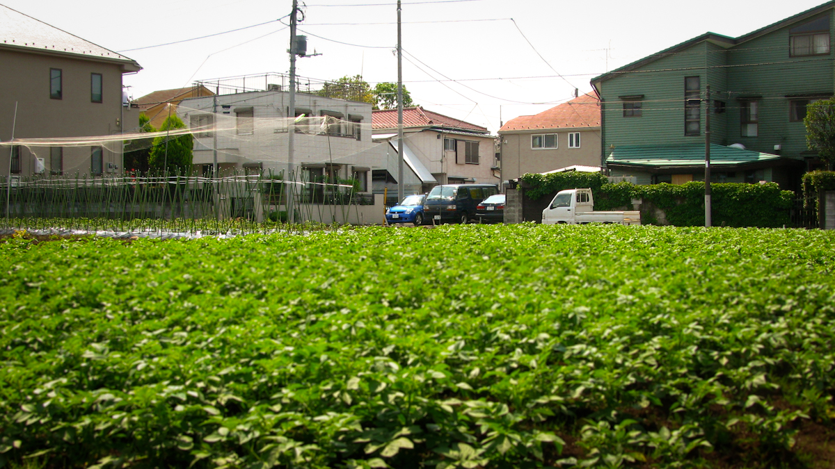 Japan S Urban Agriculture Cultivating Sustainability And