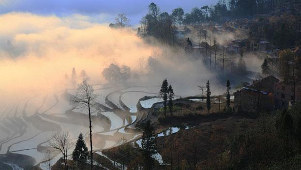 Biodiversity in the Hani cultural landscape