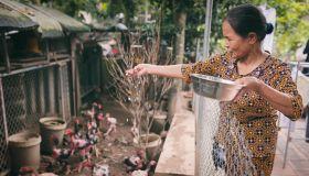 Viet Nam's Data Revolution Is Well on Its Way