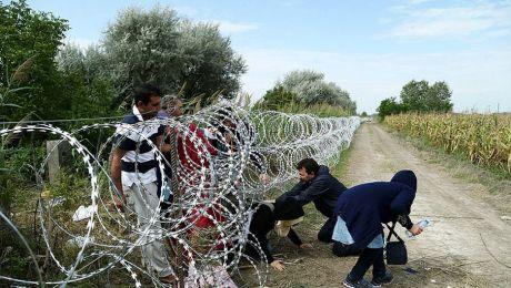 Europe's Disgrace